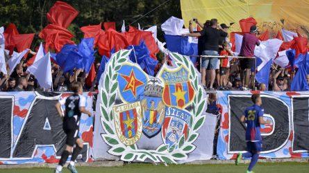 Permalink to Marca Steaua, bunul partidului